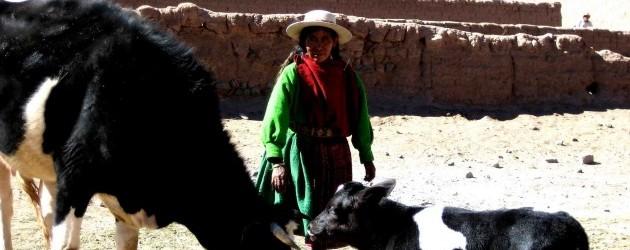 Comunitats rurals indígenes de Yura (Potosí)